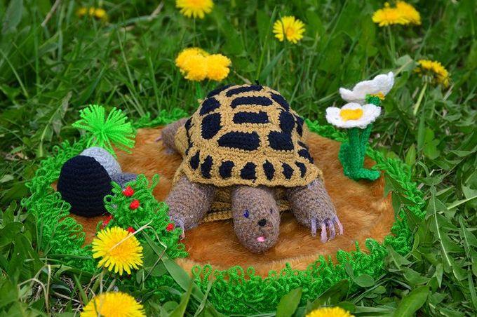«Среднеазиатская черепаха в траве», автор Дарья Бакулина